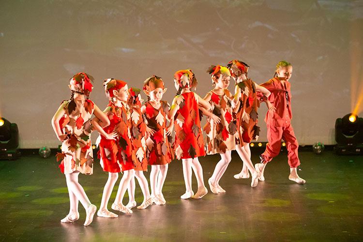 danse-classique-niveau-1-2018-moulin